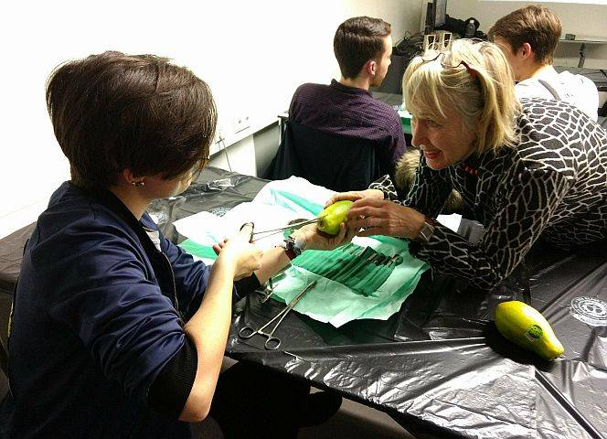"""Bei ihrem Workshop lernen die """"Medical Students for Choice"""" Abtreibungsmethoden. Geübt wird an Papayas."""
